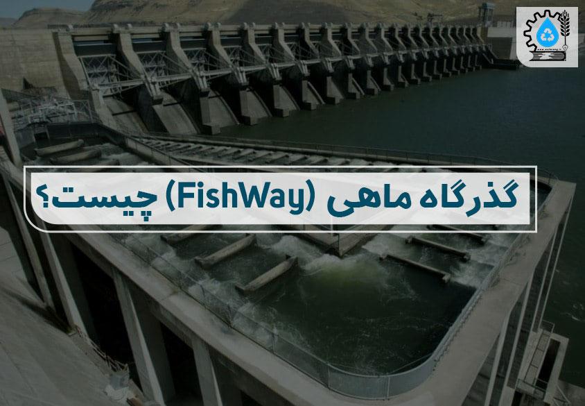 گذرگاه ماهی